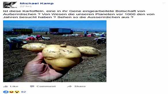 ausserirdische kartoffel