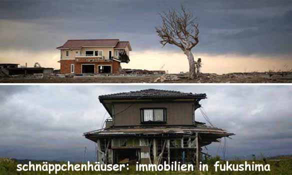 immobilien in fukushima